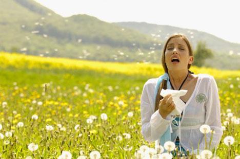 En NorteHispana nos preocupamos por tu salud y te aconsejamos sobre las alergias.