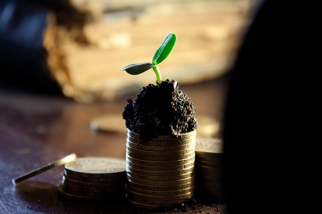 Elegir entre ingresos o gastos para ahorrar.
