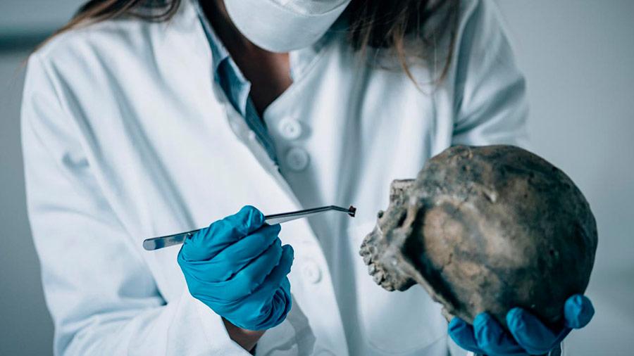 exhumaciones civiles y judiciales
