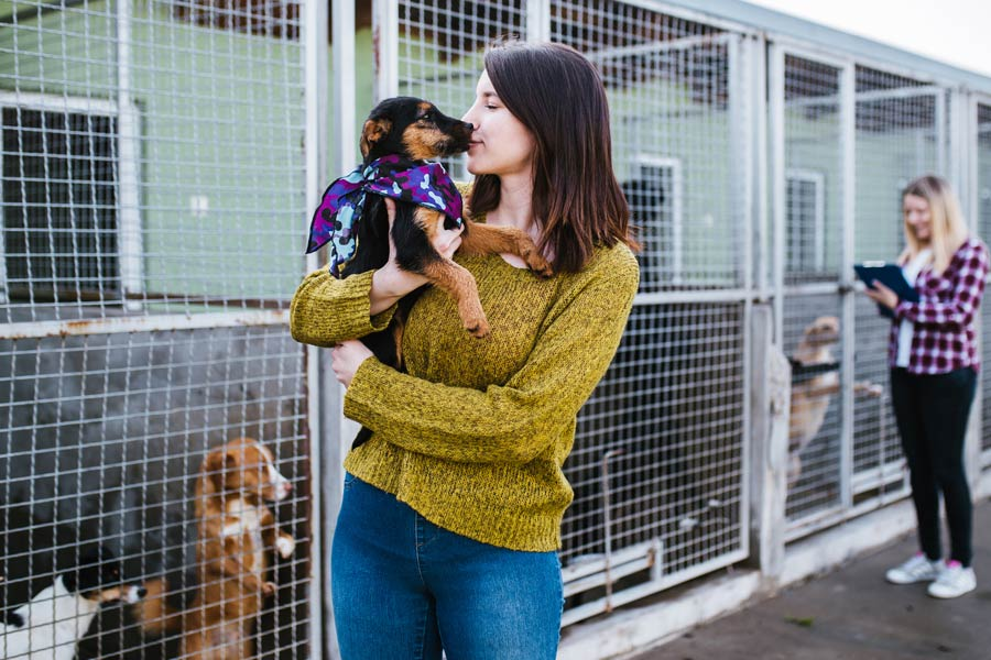 adoptar perro perrera