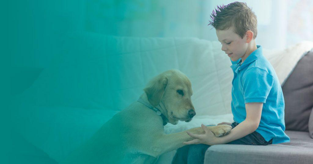 Cómo educar a un perro en casa