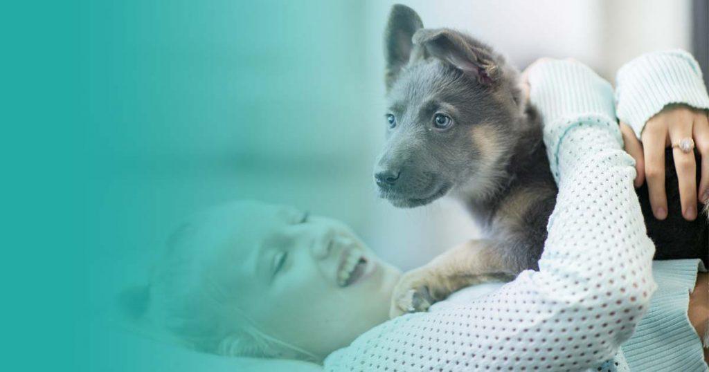 quiero adoptar a un perro: razones para convencer a tu pareja/padres